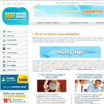 Bestwritingservice.com Screenshot
